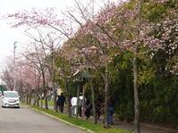 栗山公園 - 今日の鳥さんⅡ