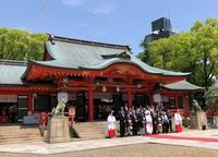 生田神社で綺麗な花嫁さんに出会う - 島暮らしのケセラセラ