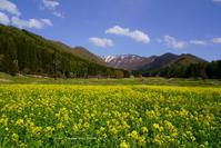 野沢温泉スキー場春の柄沢ゲレンデ - 野沢温泉とその周辺いろいろ2