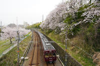 桜と阪急②千里線編 - 鉄男の部屋