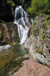 シャクナゲの咲く琵琶の滝と花筏の中の滝  下多古川本谷 - 峰さんの山あるき
