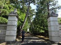 5月2日の朝散歩 - マイニチ★コバッケン