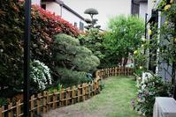 5月の庭~♬ - 今夜の夕食