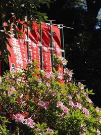 日枝神社 - belakangan ini