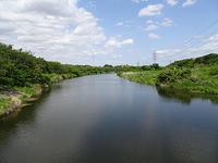 花見川散歩 - アコースティックな風