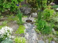 新緑の庭 - ゆうゆう覚書