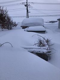 こくわ棚の雪害・・補修しました。 - あいやばばライフ
