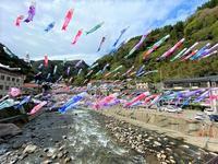 杖立温泉鯉のぼり祭り(阿蘇郡小国町) - 今日は何処まで・2