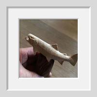 アメマス !! - 十勝 Trout Carving Gallery II