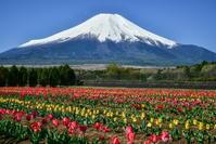 花の都公園 - 風とこだま