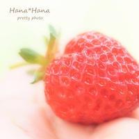 *苺* - HANA*HANA