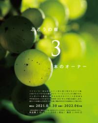 25.ワイン - 大阪酒屋日記 かどや酒店 パート2