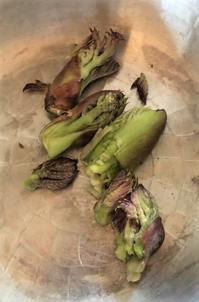 季節の喜び山菜のアヒージョ - 小さな森の小さな家