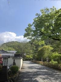 小さな偶然 - g's style day by day ー京都嵐山から、季節を楽しむ日々をお届けしますー