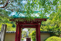 光則寺の新緑 - エーデルワイスブログ