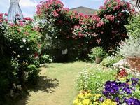 薔薇の咲く庭 - Macんち日記2