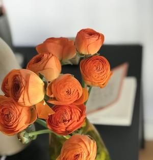 オレンジのラナンキュラス - 40 ans , a Paris  § 40からのパリ日記