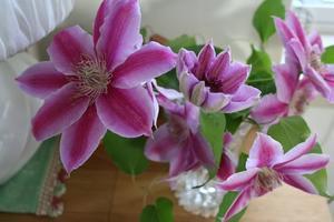 花咲く前の「芳香」 - 京都 おとなの絵付け。こどもの手仕事