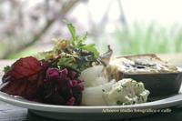 塩味の焼きたてお食事ケーキ - Arboreo  studio fotografico e caffe      『フォトスタジオと大人の小さなカフェ』