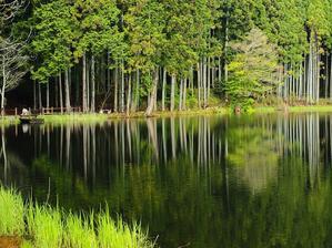 映り込み   奈良県 - ty4834 四季の写真Ⅱ
