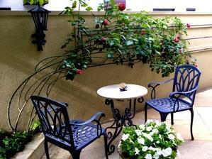 今朝の庭 - thyme garden