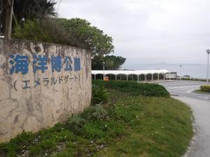 ◆2021沖縄へ⑤ ~ウォーキングで備瀬へ♪~ - ハッチャンの「大阪大正区で沖縄三昧」