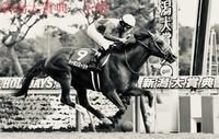 新潟大賞典2021予想 - 競馬好きサラリーマンの週末まで待てない!