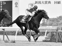新潟大賞典 2021 回顧 - 競馬好きサラリーマンの週末まで待てない!