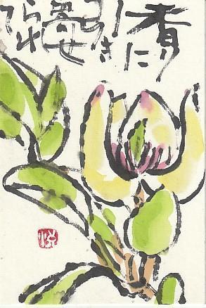 招霊木(おがたま) - 日々是絵手紙