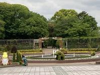 豊橋のんほいパーク動物園ゾーン - 蒼穹、 そぞろ歩き2