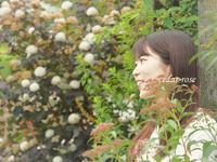 花咲く乙女 - 瞳の記憶