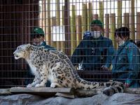 リヒトと採血 - 動物園放浪記