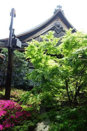 観智院 四方正面の庭 - レトロな建物を訪ねて