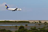 育つマングローブ - 南の島の飛行機日記