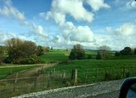 車の旅、南島から北島へ/ Car Trip From The South Island To The North Island - アメリカからニュージーランドへ