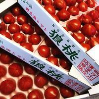 四国四万十の 狼桃トマト入荷しております…! - Aシェフの気ままBlog…