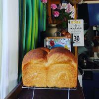 季節の酵母おまかせパンセットとうれしいご感想 - 自家製酵母で楽しむ暮らし uipain ユイパン