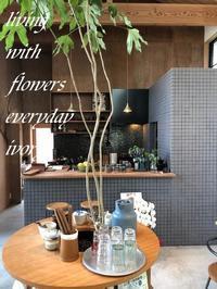 カフェ『かくれみの』OPEN‼︎ -  Flower and cafe 花空間 ivory (アイボリー)