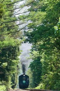 SL只見線新緑号縦煙を堪能 - 蒸気屋が贈る日々の写真-exciteVer