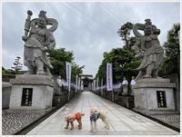 行きはよいよい、帰りは辛い散歩コース(´A`。)グスン - さくらおばちゃんの趣味悠遊