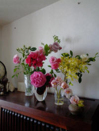 庭のお花 - schizzo schiribizzo schiribillo