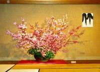桜 - 東京いけばな日記 花と暮らしと生活と