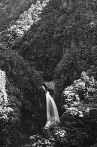 モノクローム不動七重の滝 - 風の香に誘われて 風景のふぉと缶
