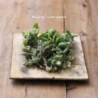 山菜の天ぷらと合わせるのは… - ふみえ食堂  - a table to be full of happiness -