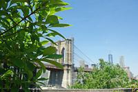 観光者が戻り始めているダンボへ - NY/Brooklynの空の下