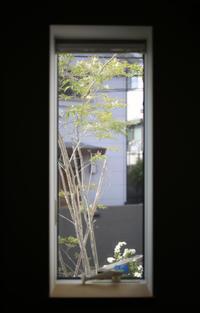 プラダンで簡単な棚を - 宙吹きガラスの器