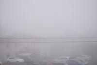 霧の朝(イイ事アリそ^^)数独 - 前を向いて「ひまわり」