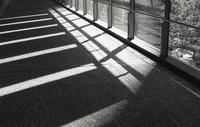 「モノクロームな日」 - 相模原・町田エリアの写真サークル「なちゅフォト」ブログ!