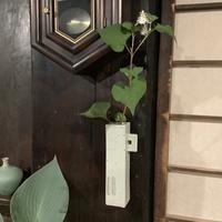 小さな植木鉢と花器展・2021〜2 - アオモジノキモチ