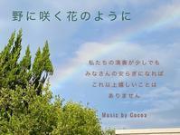 「ここあ」NHK出演記念野に咲く花のように~今回は健気な心で生きてゆく西川ファミリーの紹介です - Rhythm In Motion